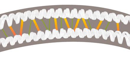liaisons keratine cheveux humidite elasticite boucles