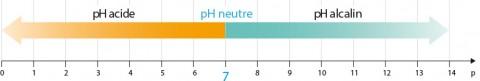 Echelle de pH : acide, neutre et alcalin